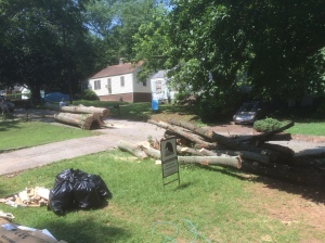 By the end of the day there was two trucks full of wood chips and a full load of logs.